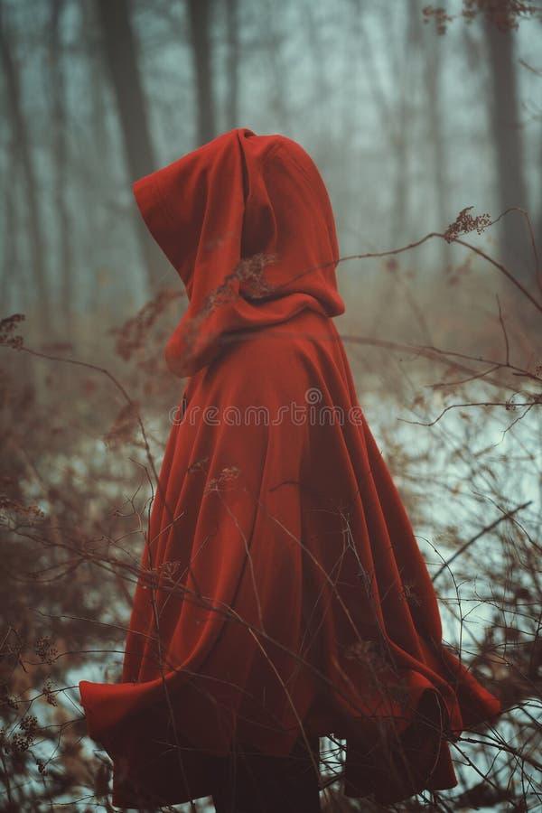 Casaco vermelho na névoa imagem de stock