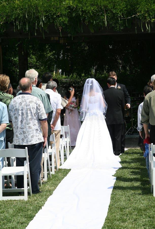 Casamento foto de stock