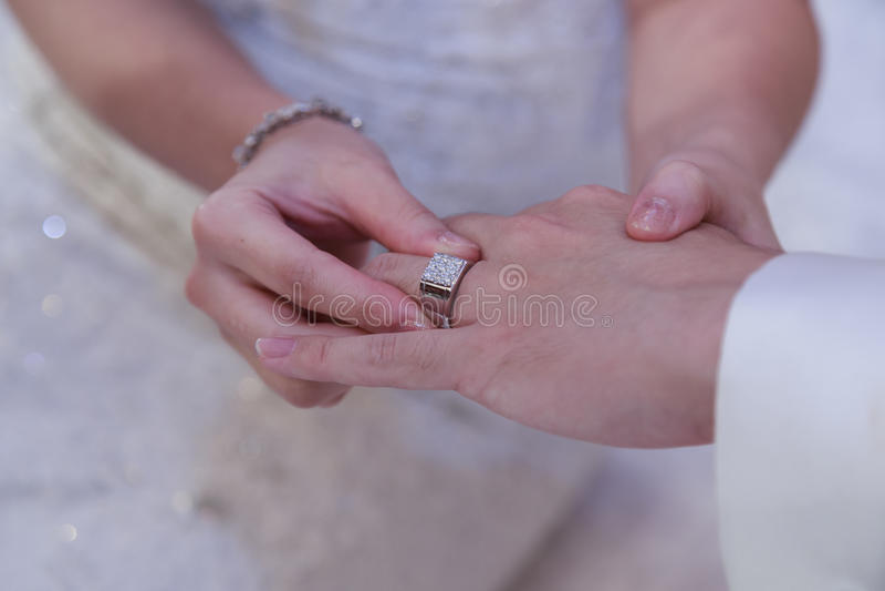 Casamento, aliança de casamento, acoplamento fotos de stock royalty free