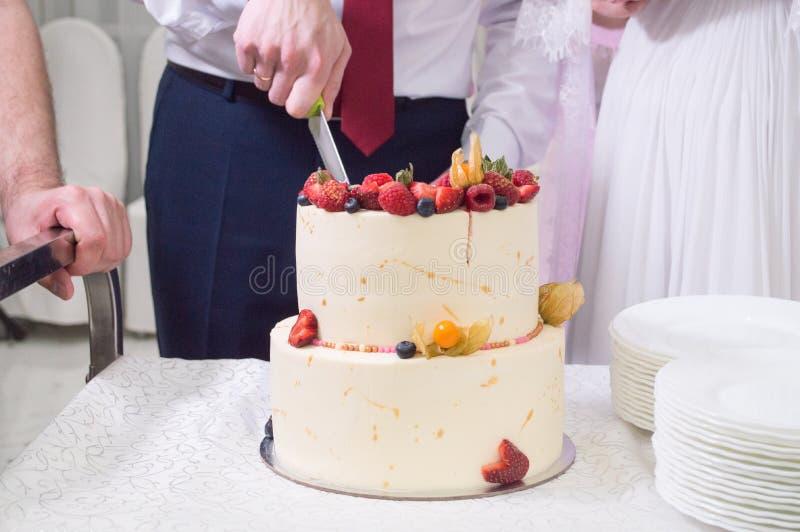 Casamento, bolo, faca, noivo, noiva, convidados, feriado, doçura imagens de stock