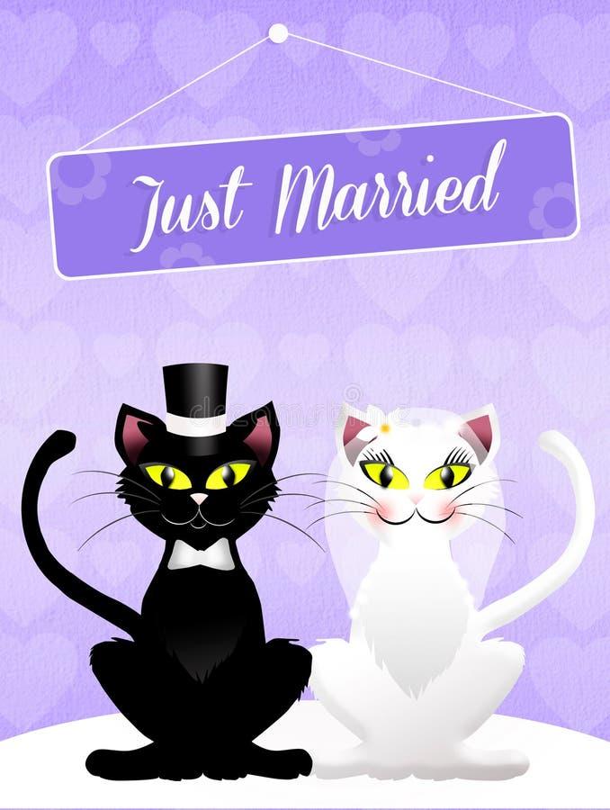 Casamento dos gatos ilustração stock
