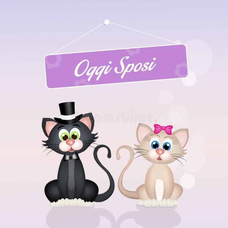 Casamento dos gatos ilustração royalty free
