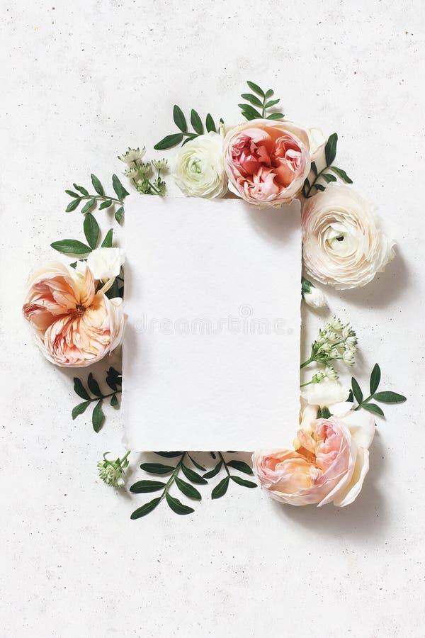 Casamento feminino, cena do modelo do anivers?rio Cartão de papel vazio O quadro floral de cora rosas inglesas cor-de-rosa foto de stock royalty free