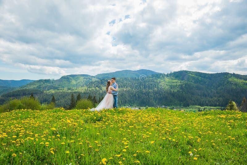 Casamento nas montanhas, UM PAR NO AMOR, fundo das MONTANHAS, dentes-de-leão cercados ESTANDO, ENTRE O GRAMADO COM A GRAMA VERDE, imagem de stock
