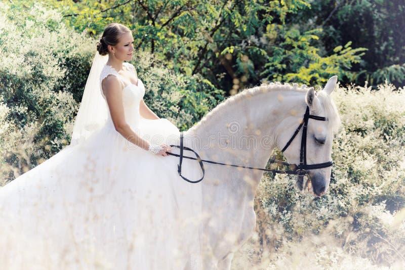 casamento Noiva com cavalo branco fotografia de stock royalty free