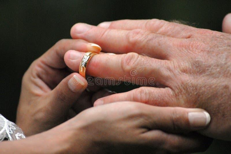 Casamento Ring Hands fotografia de stock