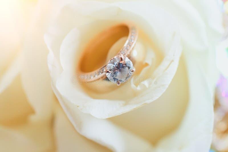 Casamento Ring Placed na rosa branca imagens de stock royalty free