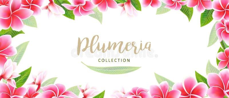 Casandose el marco y poner letras florales del plumeria de la tarjeta de la invitación a la plantilla de la postal fotografía de archivo libre de regalías