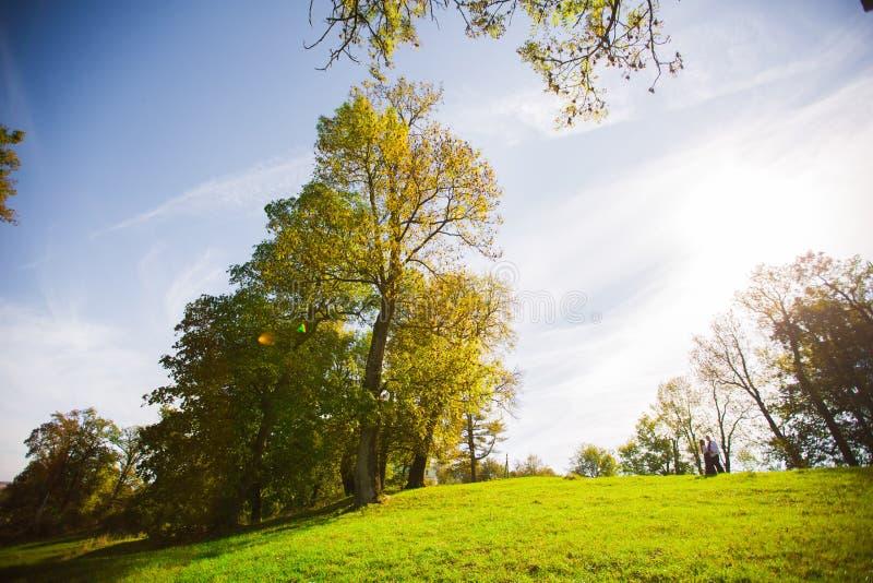 Casandose pares soleados al aire libre en día soleado del otoño imágenes de archivo libres de regalías