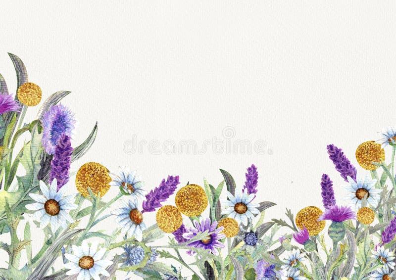Casarse el marco redondo de flores salvajes watercolor centro de flores Diseño de la plantilla de la tarjeta de felicitación invi libre illustration
