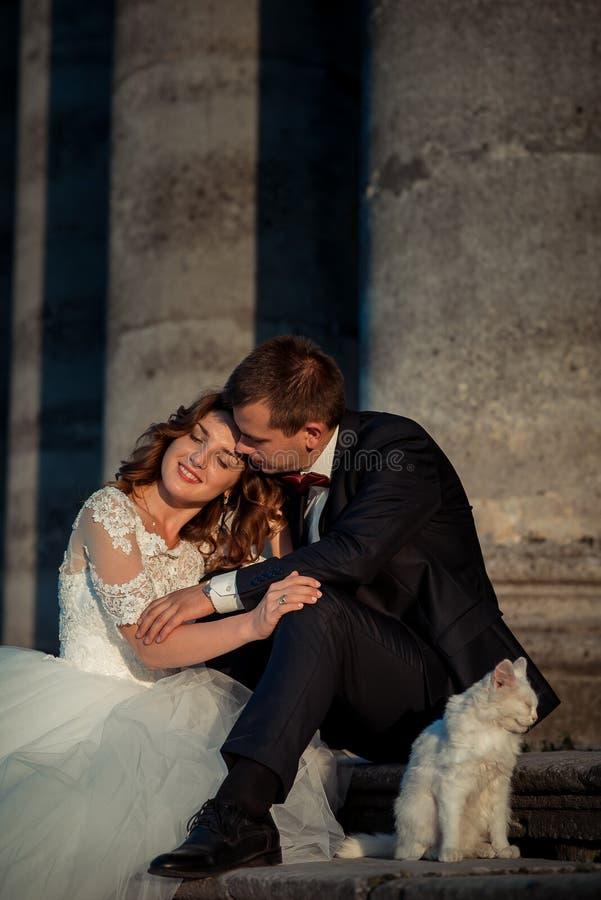Casarse el retrato al aire libre Los recienes casados felices elegantes sensuales son blando de abrazo y que se sientan en las es fotos de archivo