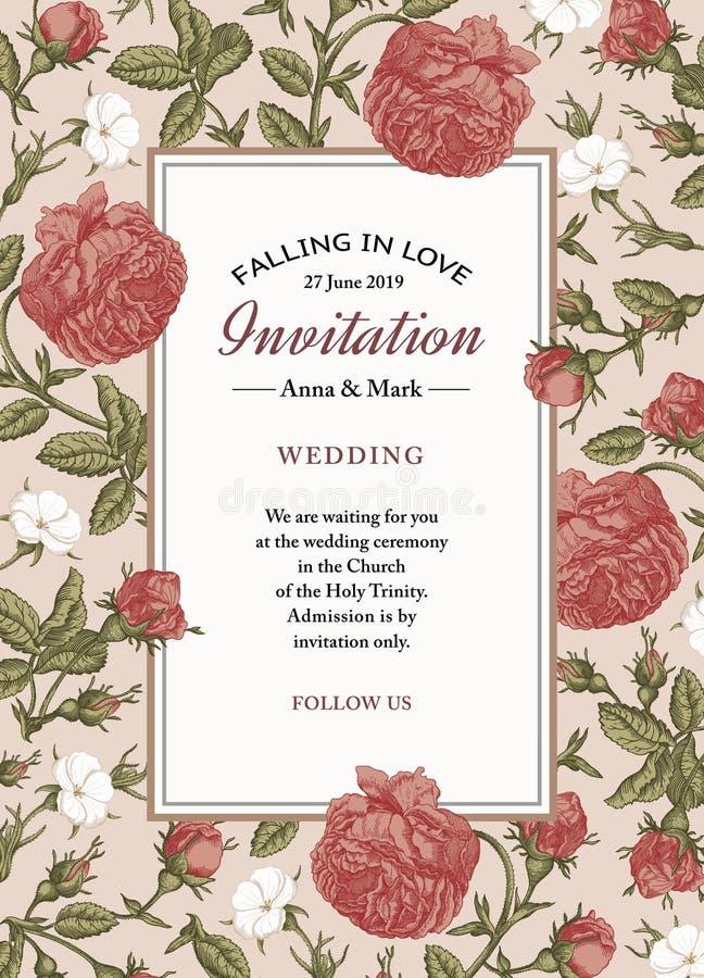 Casarse gracias y la invitación Vector realista hermoso del capítulo de tarjeta del agrostemma de las rosas de las flores que gra libre illustration