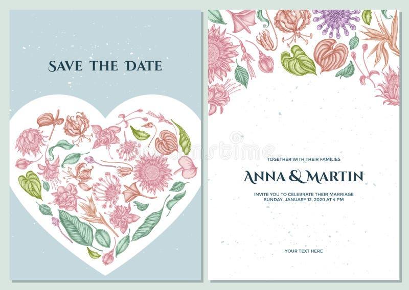 Casarse la tarjeta de la invitación con las margaritas africanas en colores pastel, fucsia, gloriosa, protea de rey, Anthurium, s ilustración del vector