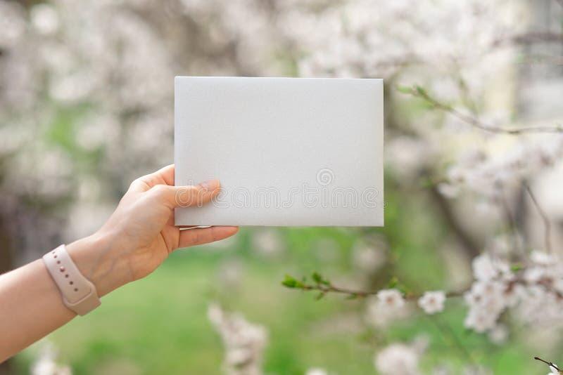 Casarse las hojas de las tarjetas de la invitación, de los sobres del arte, del rosa y blancas del flor y verdes en el fondo bla foto de archivo libre de regalías