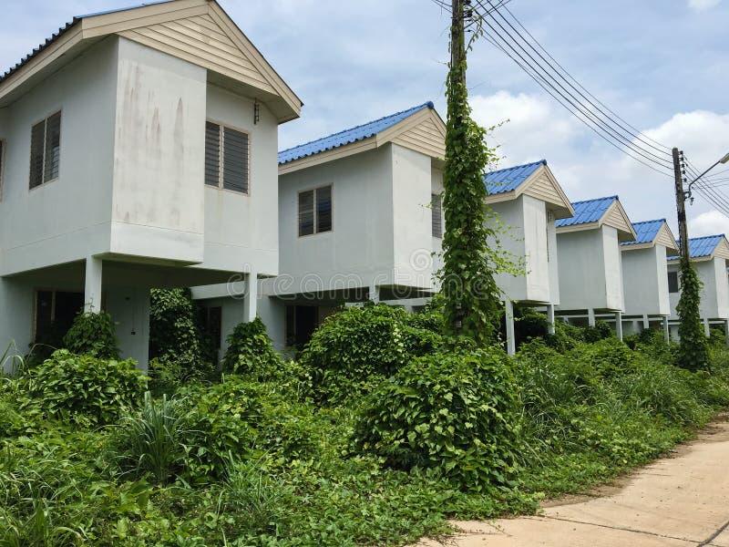 Casas abandonadas com as plantas cobertos de vegetação nelas imagem de stock