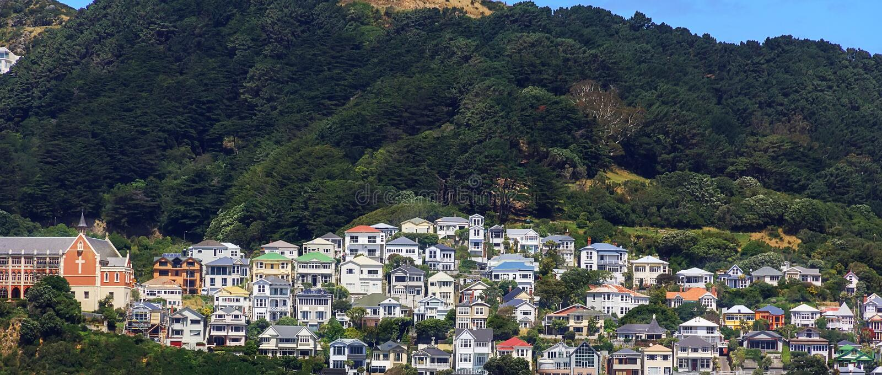 Casas coloridas na montagem Victoria em Wellington, Nova Zelândia fotografia de stock royalty free