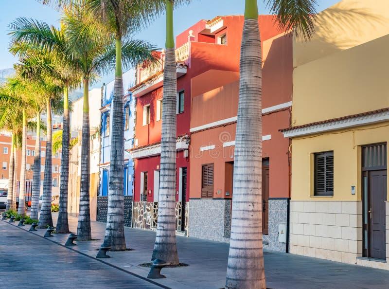 Casas coloridas, palma em Ilhas Canárias de Tenerife da cidade de Puerto de la Cruz da rua fotos de stock royalty free
