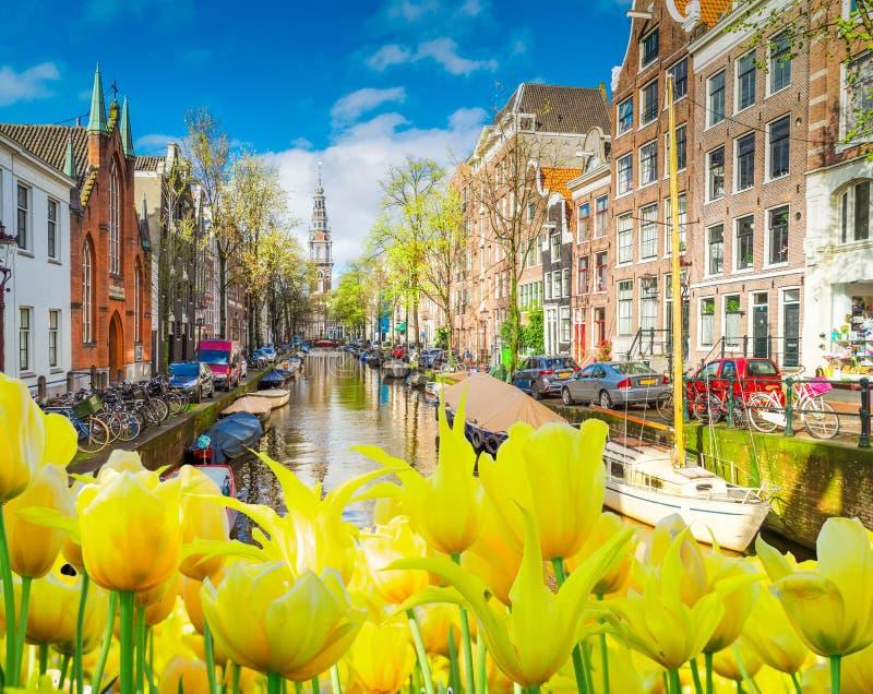 Casas de Amstardam, Países Baixos ilustração royalty free