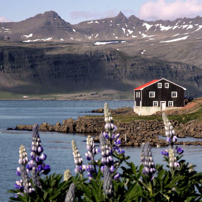 Casas de Islandia foto de archivo libre de regalías