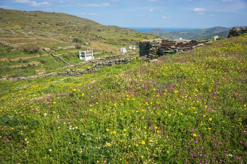 Casas de la paloma en la isla de Tinos en Grecia fotografía de archivo libre de regalías