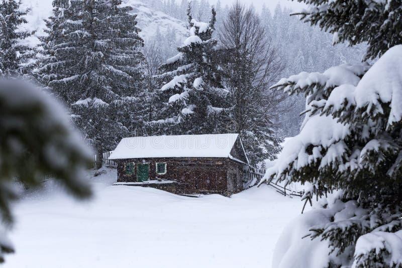 Casas de madeira em montanhas romenas no inverno foto de stock