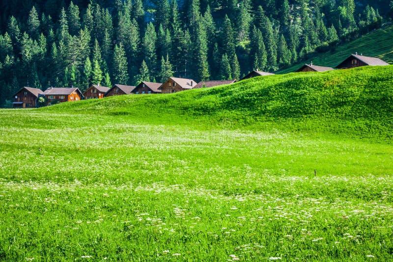 Casas de madeira em Steg, Malbun, em Lichtenstein, Europa imagens de stock royalty free