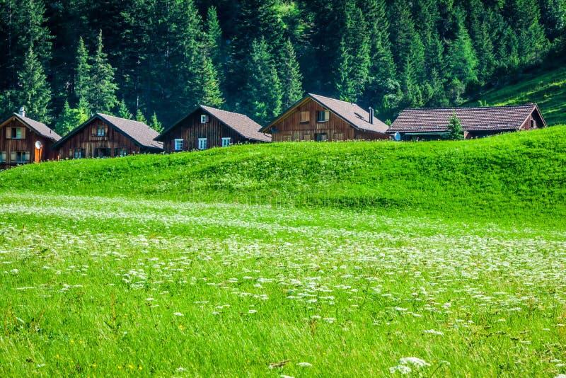 Casas de madeira em Steg, Malbun, em Lichtenstein, Europa fotos de stock royalty free