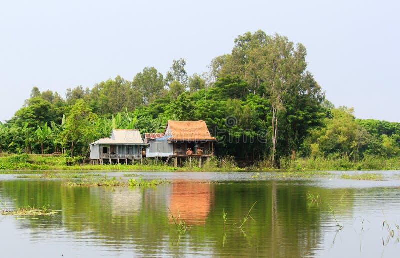 Casas de madeira no banco de rio no delta de Mekong, Vietname fotografia de stock