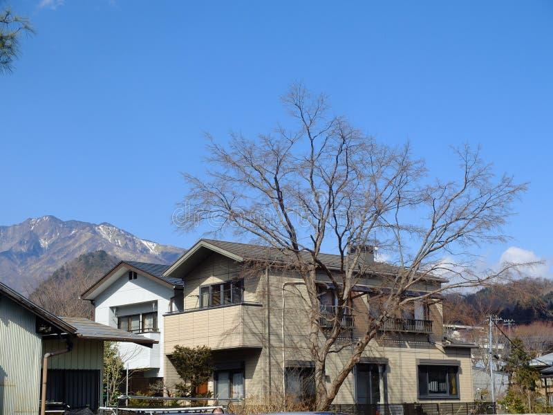 Casas del estilo japonés con el árbol seco, Japón imagen de archivo libre de regalías