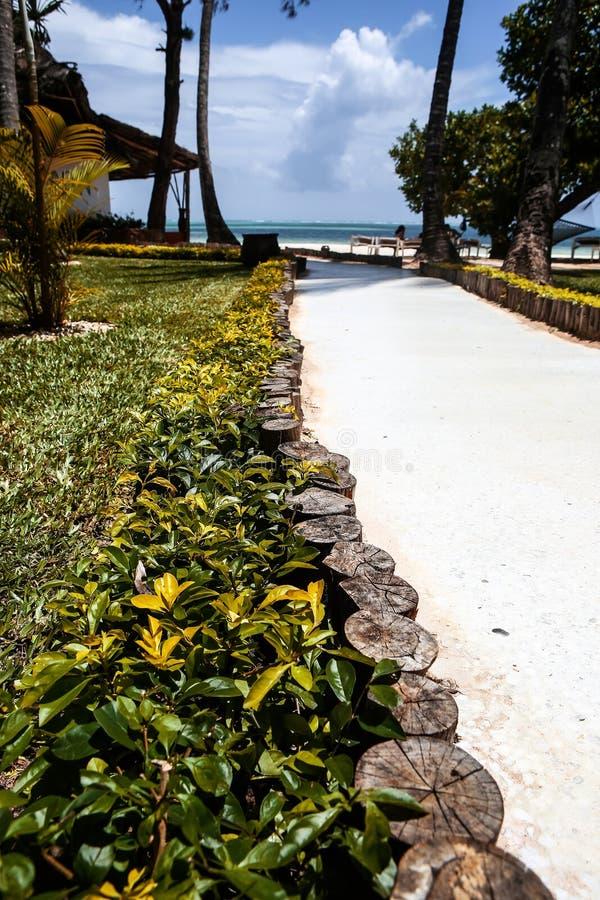 Casas do feriado com as palmeiras nos trópicos País morno para t imagens de stock