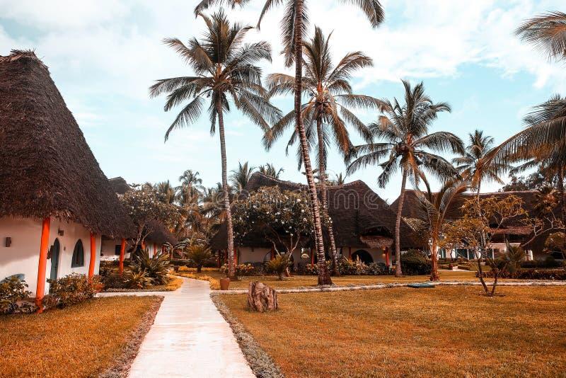 Casas do feriado com as palmeiras nos trópicos País morno para t fotos de stock