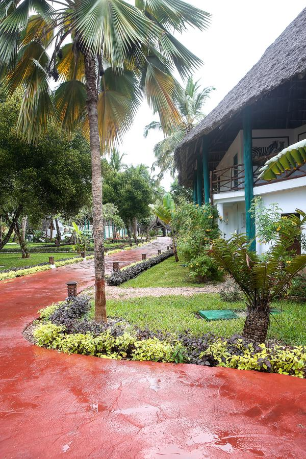 Casas do feriado com as palmeiras nos trópicos País morno para t foto de stock royalty free