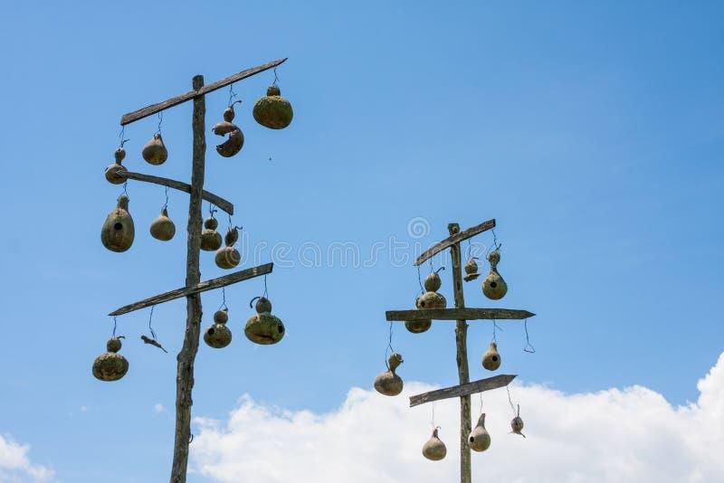 Casas do pássaro do Gourd imagem de stock