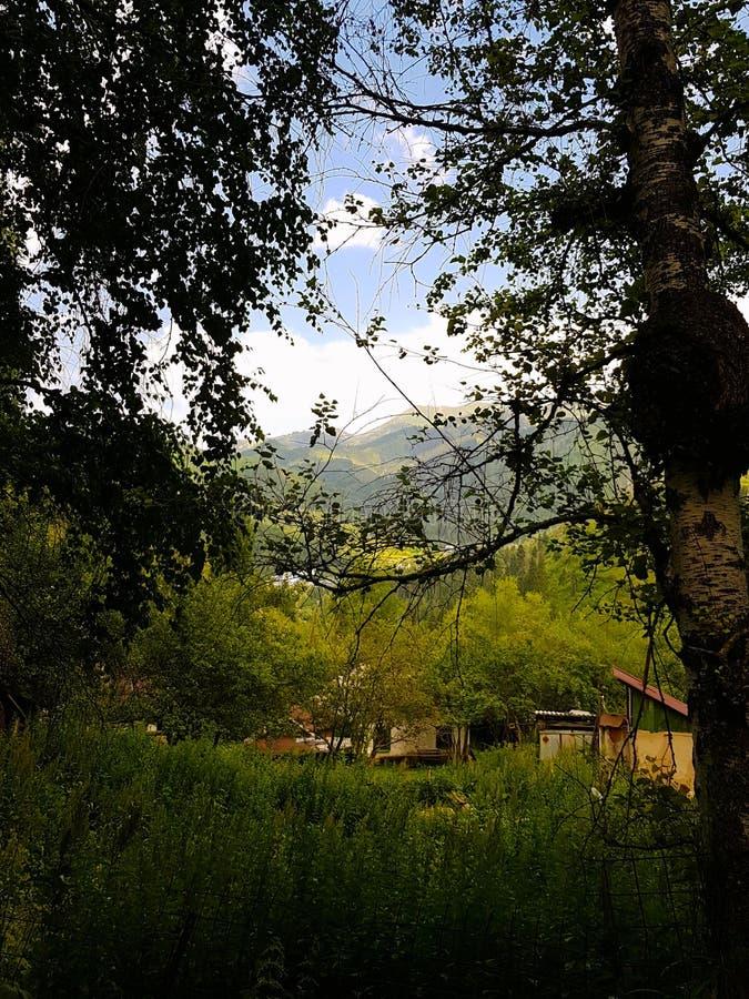 Casas en el prado alpino, Almaty, Kazajistán fotografía de archivo