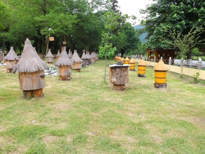Casas hermosas para las abejas foto de archivo