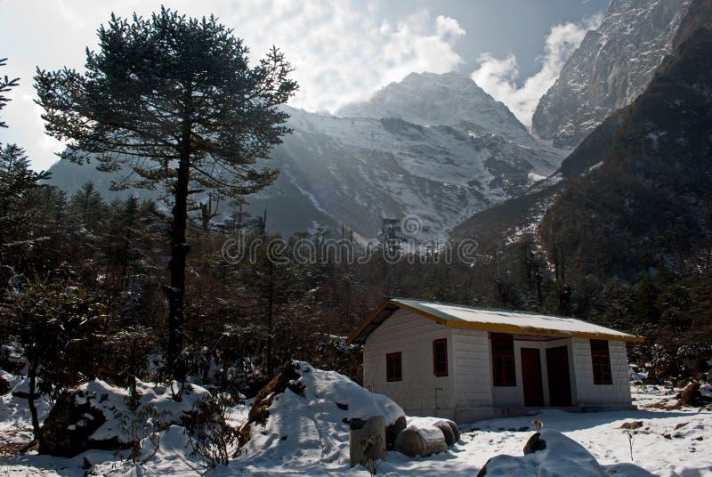 Casas locais no vale de Yumthang fotos de stock