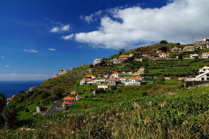 Casas mediterráneas blancas en una ladera escarpada rodeada por las plantaciones de plátano fotografía de archivo