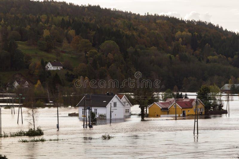Casas que estão nas águas profundas em Drangsholt Inundando do rio Tovdalselva em Kristiansand, Noruega - 3 de outubro imagem de stock royalty free