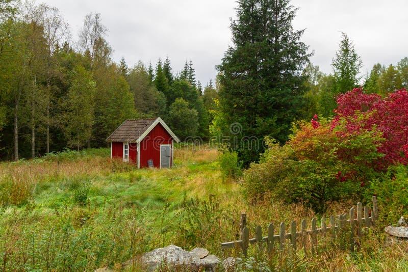 Casas rojas de madera de la cabaña en Suecia fotografía de archivo