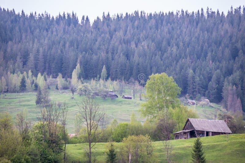 Casas rurais da vila ucraniana Mykulychyn fotos de stock