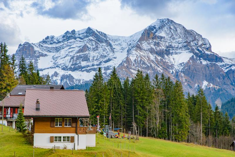 Casas suíças tradicionais do estilo nos montes verdes com a floresta na área dos cumes de Suíça, Europa imagem de stock royalty free