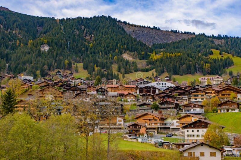 Casas suíças tradicionais do estilo nos montes verdes com a floresta na área dos cumes de Suíça, Europa imagens de stock royalty free