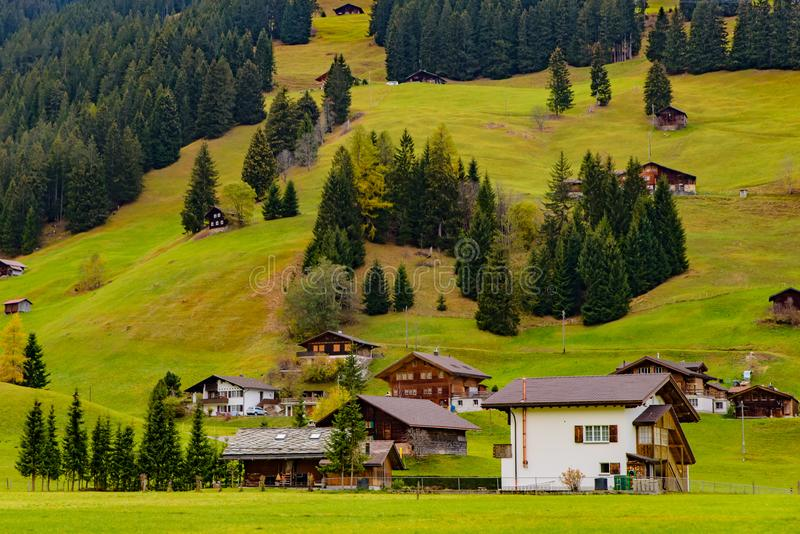Casas suíças tradicionais do estilo nos montes verdes com a floresta na área dos cumes de Suíça, Europa fotos de stock royalty free
