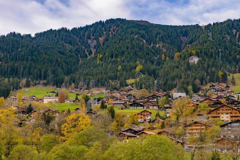 Casas suíças tradicionais do estilo nos montes verdes com a floresta na área dos cumes de Suíça, Europa foto de stock royalty free