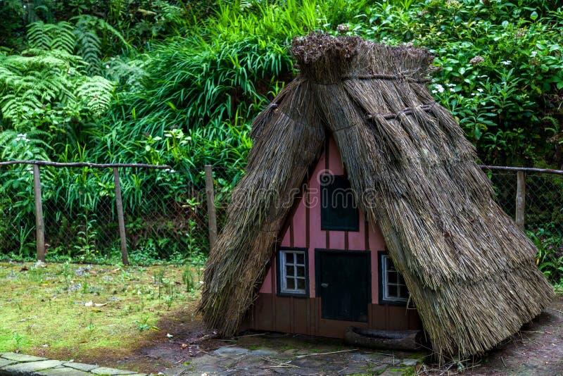 Casas típicas en la isla Madeira fotografía de archivo