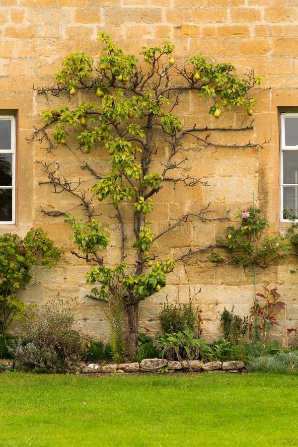 Casas velhas no distrito de Cotswold de Inglaterra imagem de stock royalty free