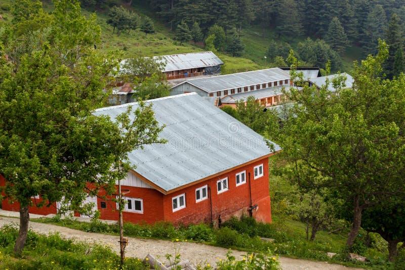 Casas vermelhas com telhado de inclinação foto de stock