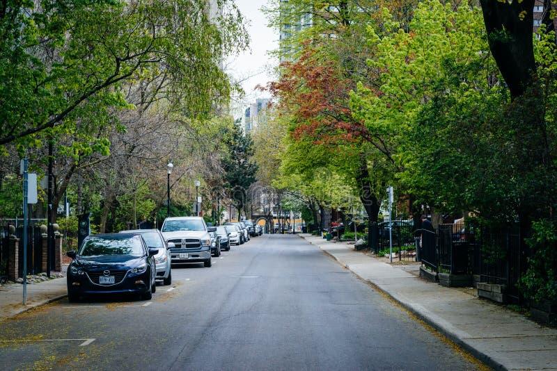 Casas y color de la primavera en la calle de McGill, cerca de Ryerson Universit fotografía de archivo libre de regalías