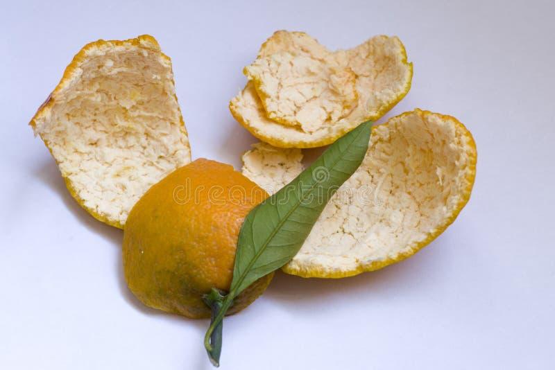A casca alaranjada pode ser usada como a medicina após a secagem É um ingrediente comum e importante da medicina chinesa, chamado fotos de stock