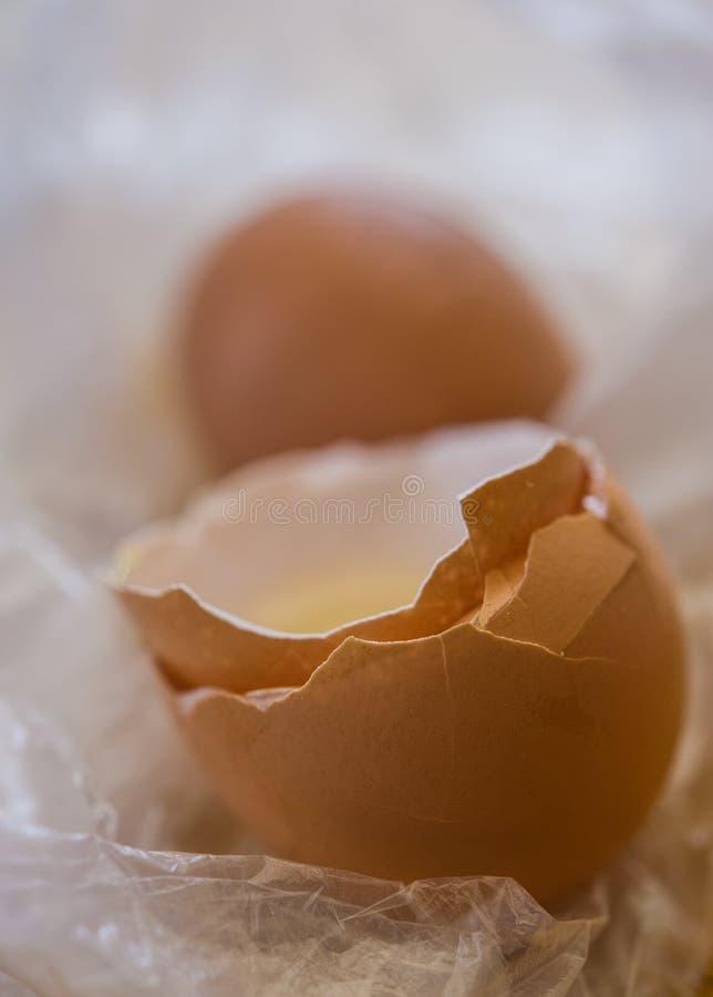 Casca de ovo quebrada imagem de stock